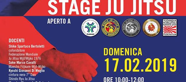Stage Jujitsu
