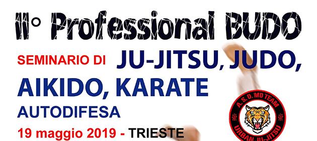 2° Professional Budo Seminar